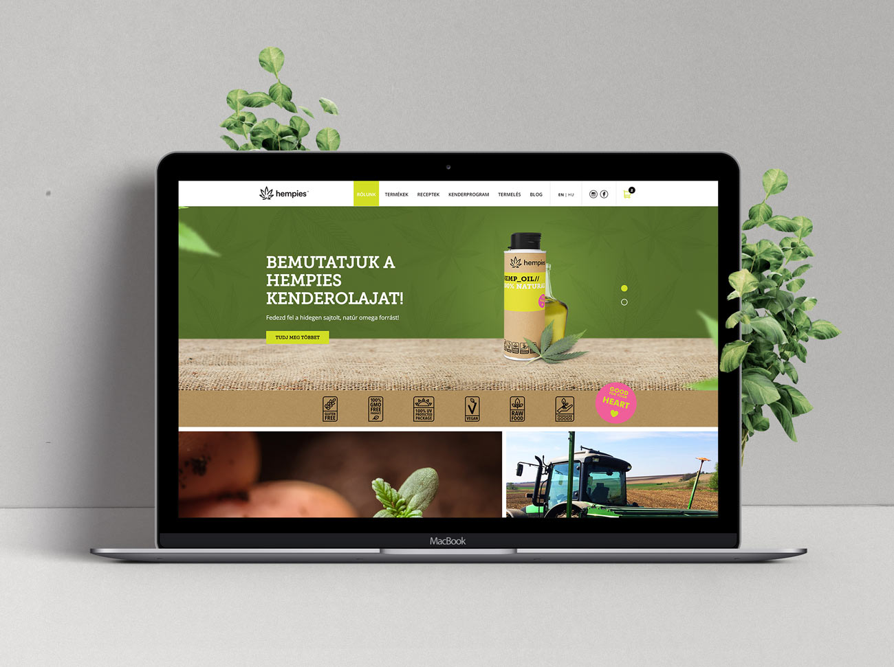 Hempies webshop reference